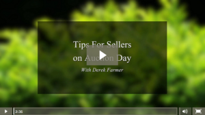 3 Tips for sellers on auction day
