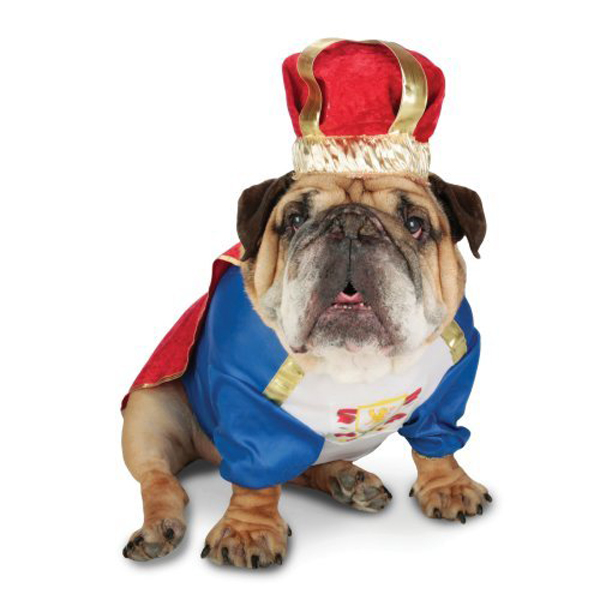 Property Marketing: Who's Top Dog in Property Advertising? PART TWO
